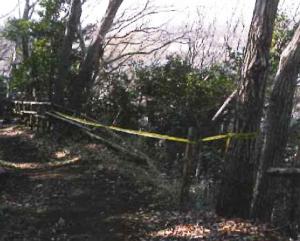 公園・緑地損傷の参考写真1